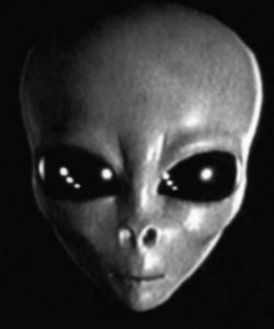Grey_Alien_head