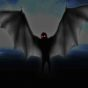 Mothman Sightings in Mexico