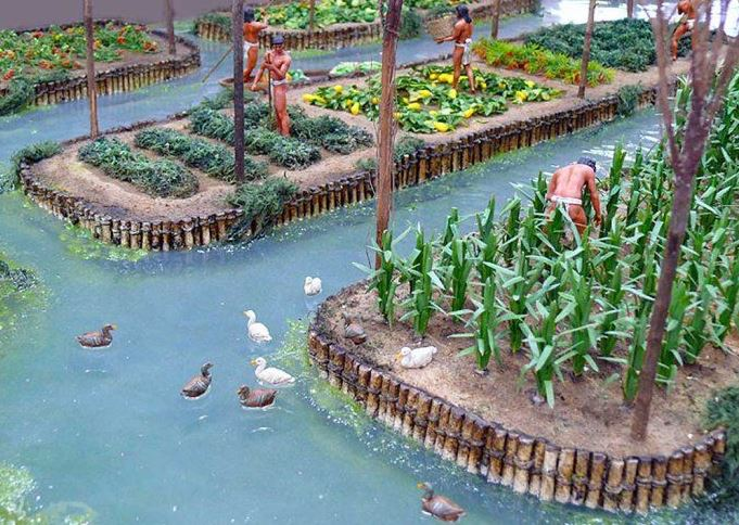 Chinampas Floating Gardens Of Ancient Mexico Mexico Unexplained
